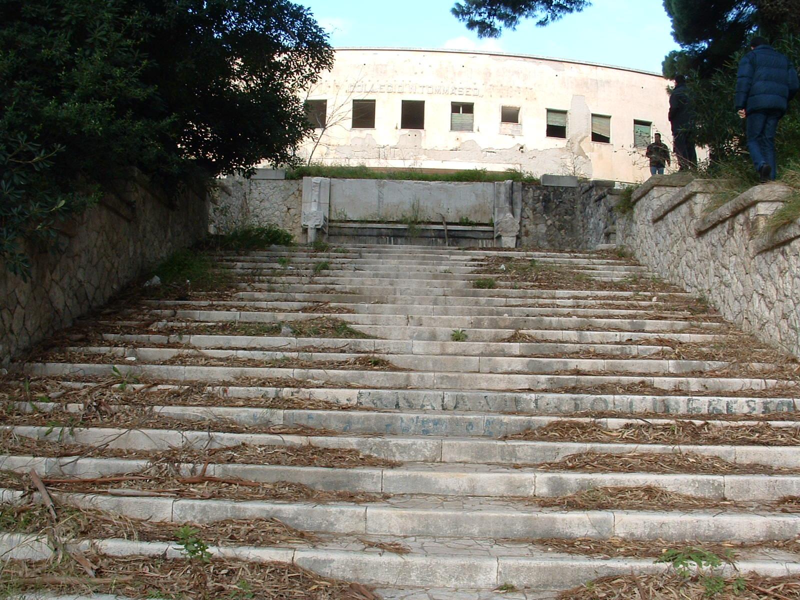 Ufficio Di Collocamento Francavilla Fontana : Francavilla f enne contromano sulla statale per